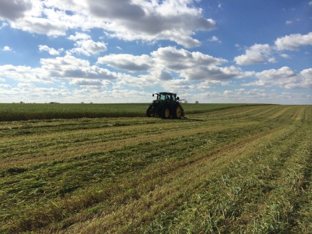 Knocking Down Oats with a 6170R and 946 MoCo